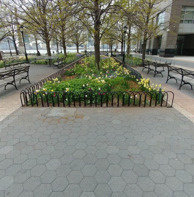 Battery Park City | Planter & Tree Pit Rails
