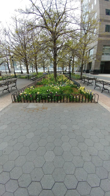 Battery Park City   Planter & Tree Pit Rails
