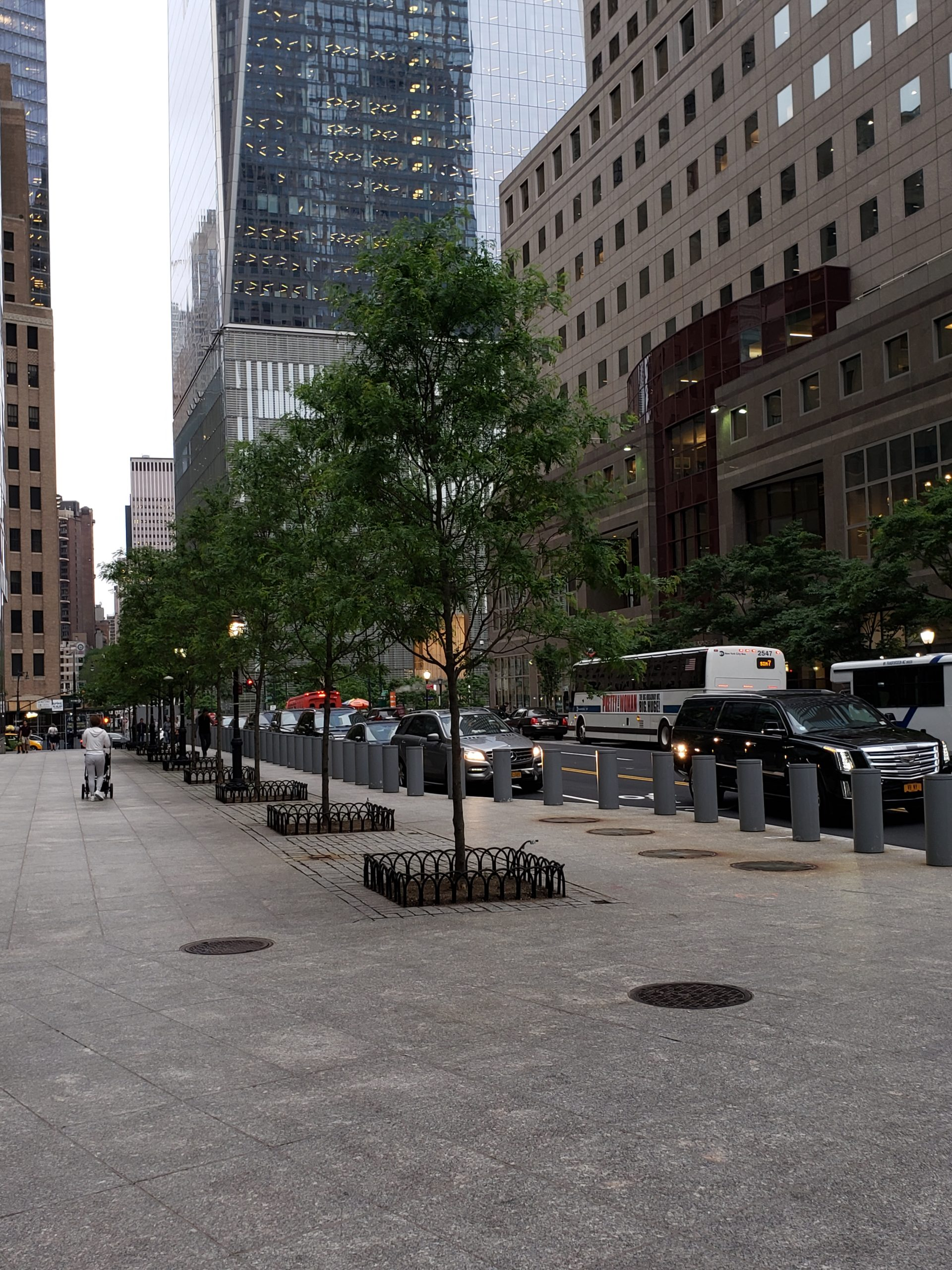 Battery Park City   Tree Removal & Replacement